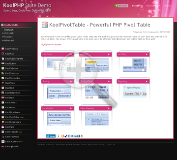 KoolPivotTable Developer License preview. Click for more details